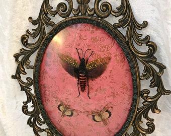 Grasshopper Trio Antique Frame