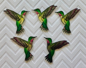 Hummingbird Magnets - set of 5