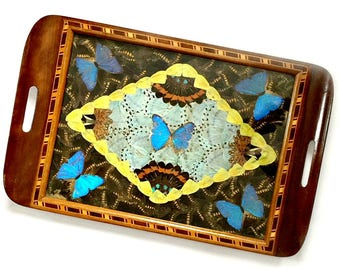 Real Butterfly Tray, Vintage Butterfly Tray, Inlaid Wood Real Butterfly Tray, Morpho Butterfly Tray, Brazilian Tray, Made in Brazil Tray