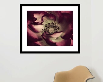 Framed wall art, large floral photography, flower artwork floral framed art print, mint burgundy wall art picture, bedroom living room decor
