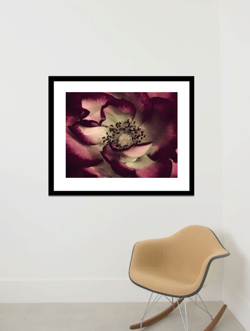 Framed wall art large floral photography flower artwork
