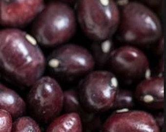 True Red Cranberry Pole Bean seeds -  Centuries old heirloom