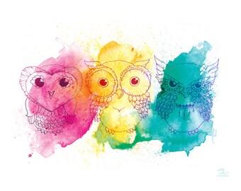 Owls Watercolor Art