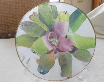 Decoupage glass dish. Cactus collection