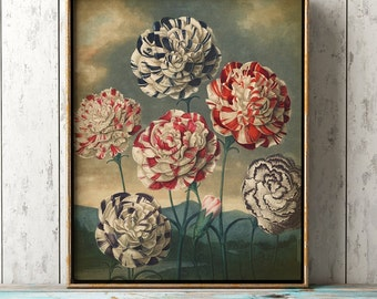Botanical print, Carnations poster, botanical wall decor, red and blue flowers print, antique flower art print