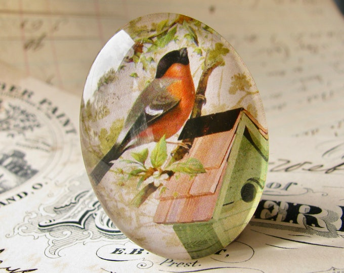 Robin sitting on a birdhouse, from our Beautiful Birds collection of handmade glass cabochons, 40x30mm oval cabochon, garden, gardening