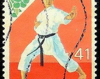 Karate Martial Arts Japan -Handmade Framed Postage Stamp Art 19995AM