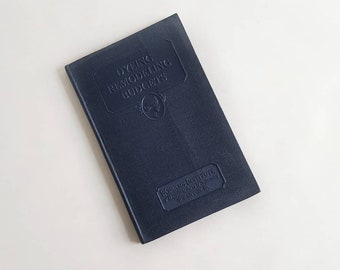 Women's Institute of Domestic Arts & Sciences Dyeing Remodeling Clothing Budget 1931 How to Book