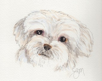 Original Maltese Watercolor Painting Portrait (9x12): Gift for Dog Lover