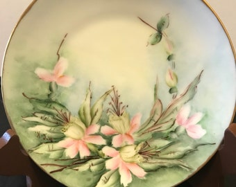 Vintage Heinrich Co Selb Bavaria Germany Porcelain Plate Colorful Pink Flowers Collectible  Handpainted Porcelain  Country Kitchen