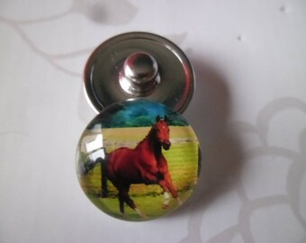 x 1 button pressure 18 mm glass round horse for jewelry