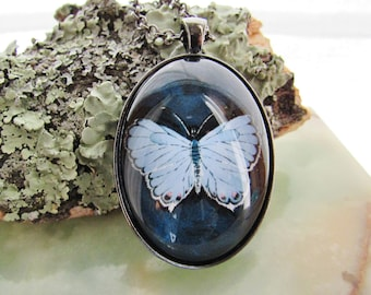 Butterfly Cameo Pendant - Necklace - Eastern Tailed Blue Butterfly - Original Art - Unique Gift for Woman - Nature Jewelry -  Gift for Her -