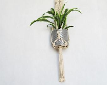Macrame Plant Hanger, Boho Decor, Plant hanger, Boho Planter, Modern Macrame, Hanging planter