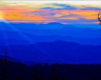 Purple Mountain Sunrise