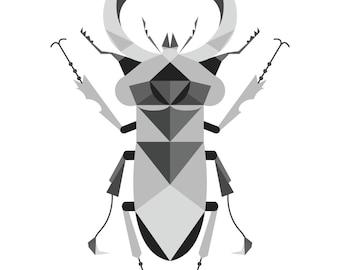 stag beetle poster, 50x70 or 30x40 cm, geometry, minimal, grey, black&white