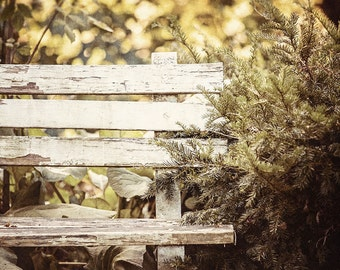 Rustic Decor, Farmhouse Decor, Beige Wall Art, Country Wall Art, Vertical Print or Canvas Art, Chipped Bench in the Woods, Autumn Decor.