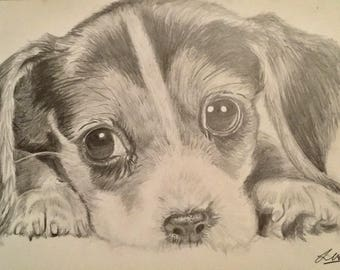 Cute Puppy Black and White