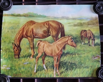 Vintage Lithography by Ole Larsen.  Horses Grazing