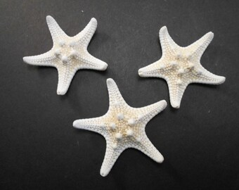 "3 Extra Small Knobby White Starfish 1-2"" Beach Wedding Decor Nautical Crafts"