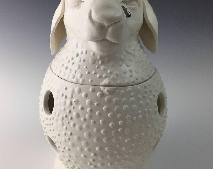 Brian the Ceramic Onion Jar