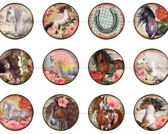 Horse Fridge Magnets Pins Party Favors Gift Sets