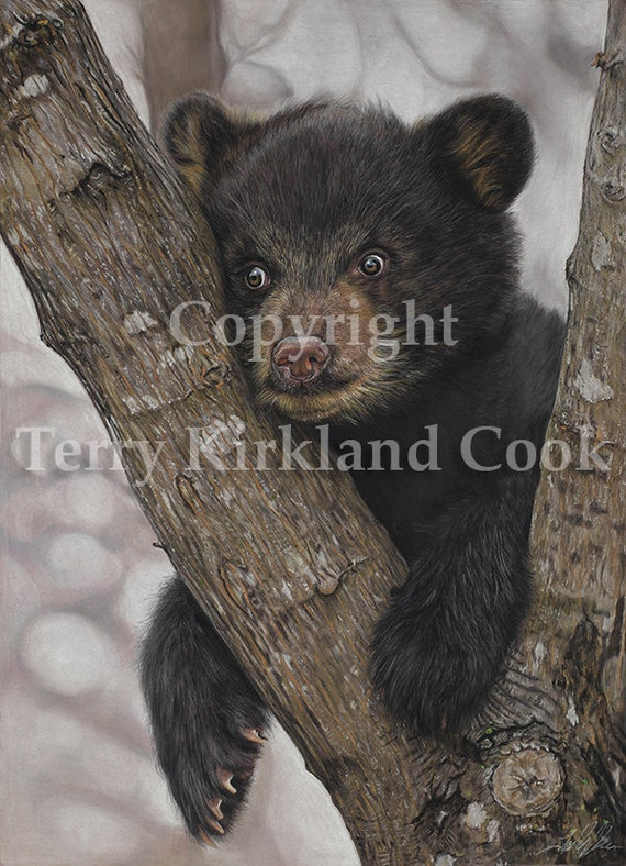 The Dilema ~ Fine Art Giclee Print of an Original Copyrighted Painting by Terry Kirkland Cook