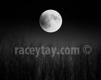 Full Moon Print, Black and White Nature Photography, Super Moon, Lunar