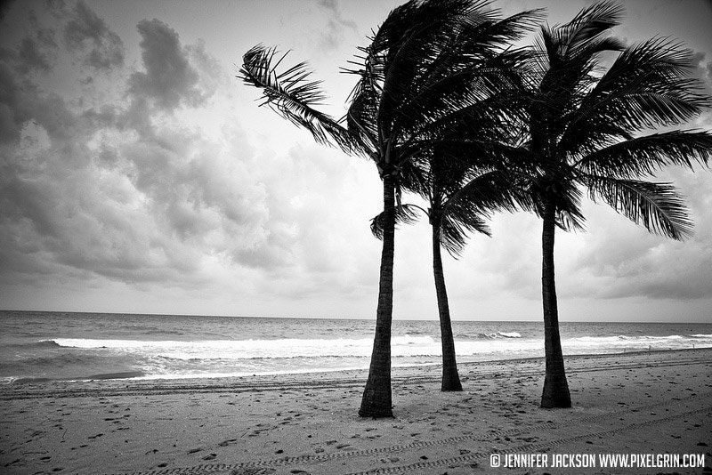 Black And White Photography Beach