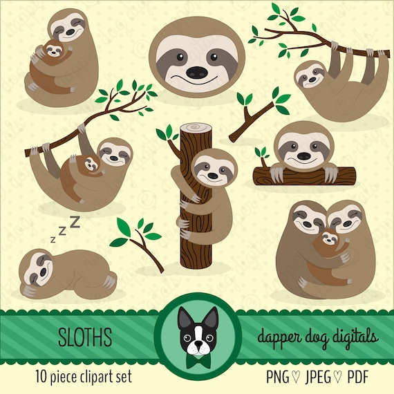 Sloths Clipart Set Commercial Use Vector Images Digital