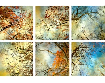 Stormy Sky Art Set, Six  Prints, New England Autumn Landscape Photography, Abstract Art, Gold Turquoise Red Decor, Bright Wall Art,