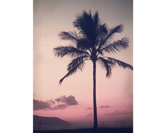 Hawaiian Sunset Photography - Photo of a Palm Tree Against a Sunset Sky in Hawaii Photograph.  Aged Vintage Antique Style