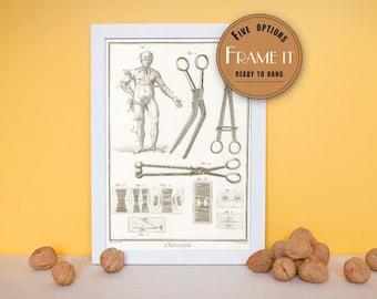 "Vintage illustration - framed fine art print, art of anatomy, 8""x10"" ; 11""x14"", FREE SHIPPING - 224"