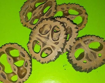 Sliced Walnut Shells