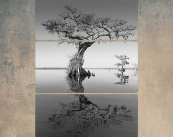 Trees at Lake BW Triptych Metal Wall Art
