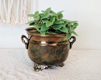 Brass Bowl with Feet / Brass Planter / Vintage Brass / Brass Wedding Accessories / Exotic Events