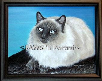 Himalyan cat portrait - Original - framed - signed - FREE Shipping!