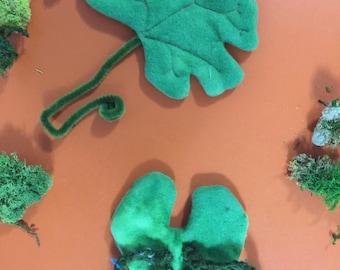 Fern baby sporophyte and gametophyte set