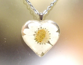 Real White Daisy Pressed Flower  Heart Glass Pendant Necklace