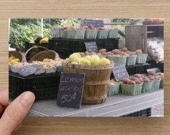 Farmers Market Bounty on Blank Note Card Food Photography Fall Autumn Harvest - All Occasion Note Card