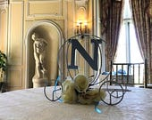 Cinderella inspired Carri...