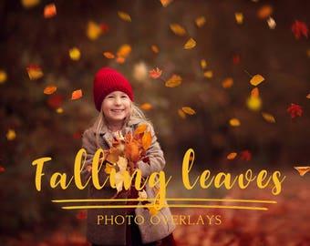 100 Falling Leaves Photo Overlays, photoshop overlays, autumn overlays, photo overlays, png overlays