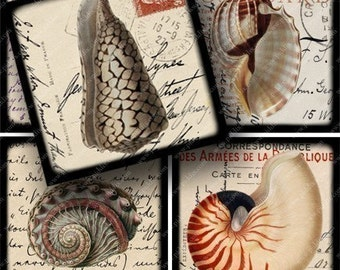 Vintage Seashell Engravings on Postcards Digital Collage Sheet 2.5 Inch Squares Printable Black Framed Shells Handwriting Stamps piddix 628