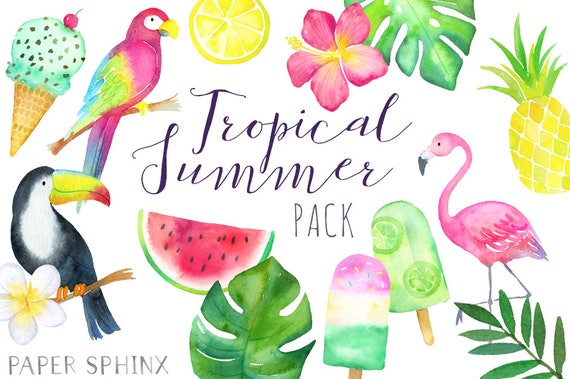 watercolor tropical clipart tropical summer toucan rh etsy com tropical clipart black and white tropical clipart free