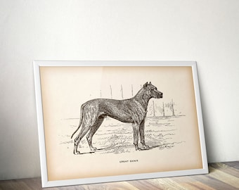 Dog print vintage, Printable art, Animal print, Dog art print, Animal wall art, Instant download print, 8x10 printable, 11x14 printable, JPG