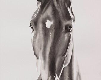 Horse portrait CUSTOM PAINTING, pet portrait.