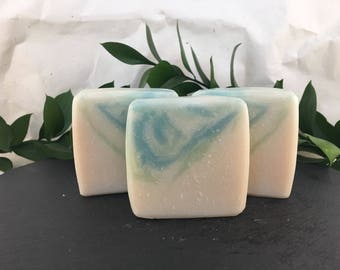 Unscented Aloe Vera Vegan Cold Process Bar Soap