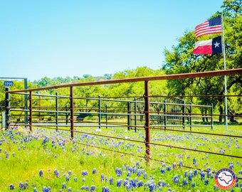 Texas, Our Texas - Wimberley Puzzle Company Signature Series - Jigsaw Puzzle