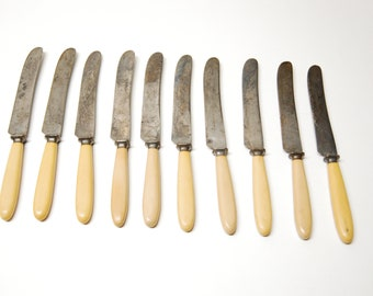 Vintage Meriden Cutlery Co 1855 Set of 10 Celluloid Handle Steel Knife Knives