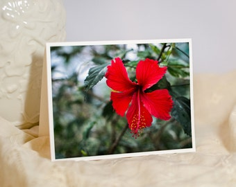 Red Hibiscus Floral Greeting Card - Tropical, Exotic Flowers - Flower Photo Note Card - Christmas Holiday Card - Blank or Personalized Card