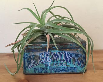 Vintage Edgeworth Sliced Pipe Tobacco Tin Rustic Home Decor Advertising Decorative Tobacciana